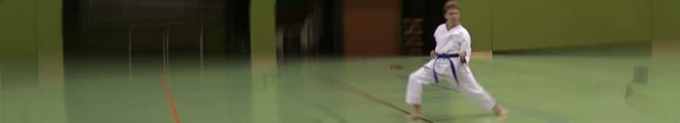 Andreas Krassnigg performing Bassai Dai (Shotokan Karate Kata)
